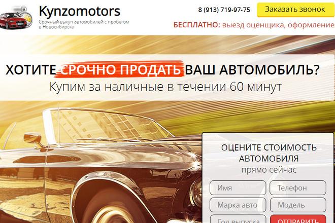 Качественная копия лендинга с установкой панели редактора 63 - kwork.ru