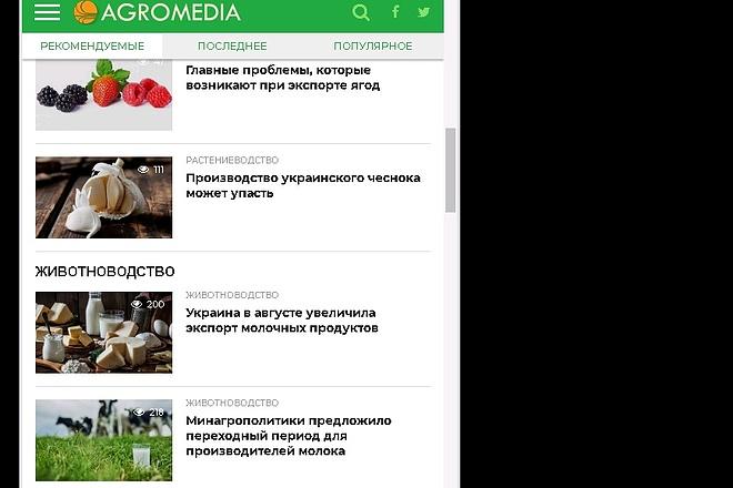 Android приложение для сайта 31 - kwork.ru