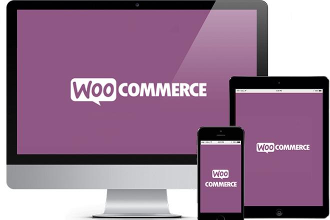 50 премиум тем WP для интернет-магазина на WooCommerce 9 - kwork.ru