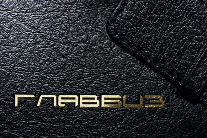 Лого бук - 1-я часть Брендбука 61 - kwork.ru