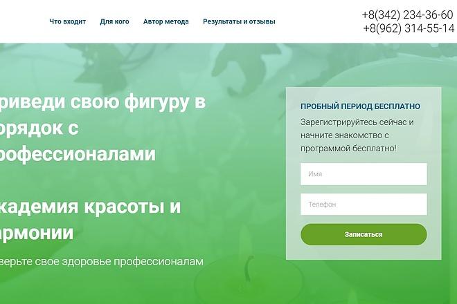 Скопирую одностраничный сайт, лендинг 37 - kwork.ru