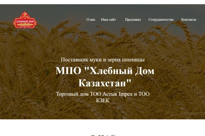 Создам сеть лендингов 2 - kwork.ru