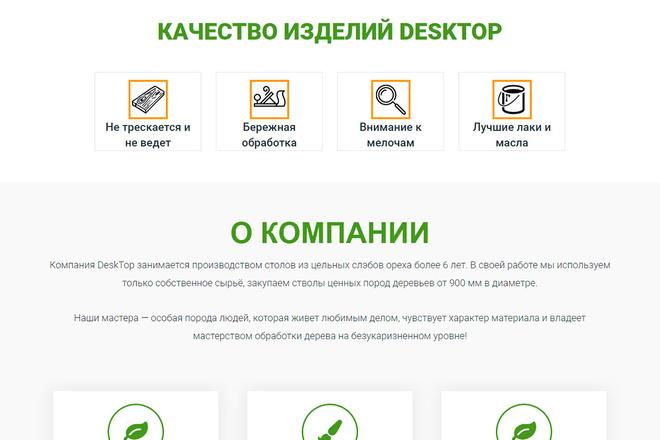 Сделаю продающий Лендинг для Вашего бизнеса 66 - kwork.ru