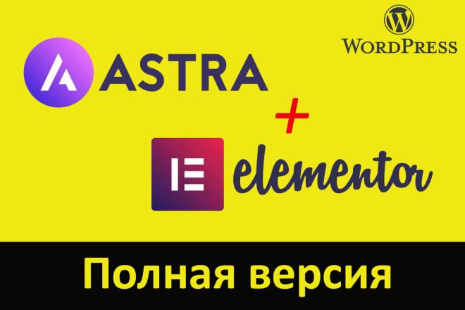 Astra Pro - с плагинами и обновлениями на русском 3 - kwork.ru
