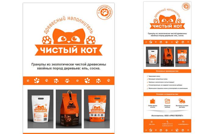 Дизайн и верстка адаптивного html письма для e-mail рассылки 2 - kwork.ru
