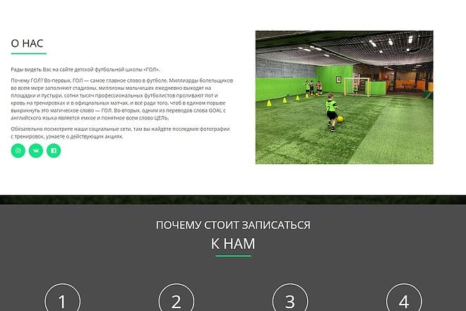 Сайт под ключ. Landing Page. Backend 159 - kwork.ru