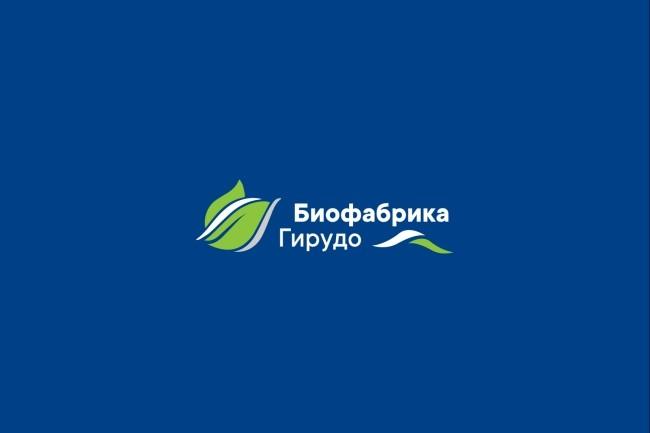 Создам логотип в нескольких вариантах 57 - kwork.ru
