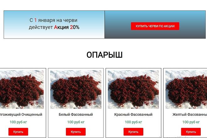 Создам лендинг на вордпресс быстро 24 - kwork.ru