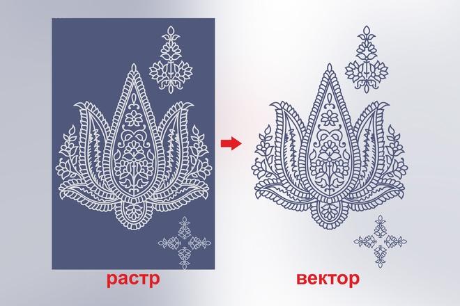 Отрисовка в векторе, формат Coreldraw, по рисунку, фото, сканированию 45 - kwork.ru