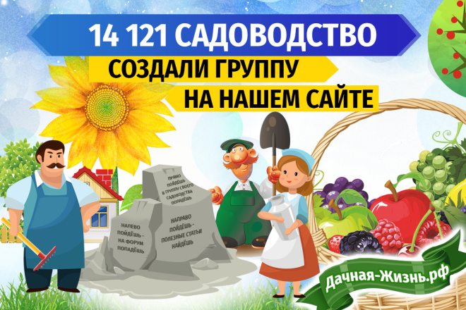 3 баннера для веб 14 - kwork.ru