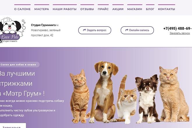 Создание отличного сайта на WordPress 17 - kwork.ru