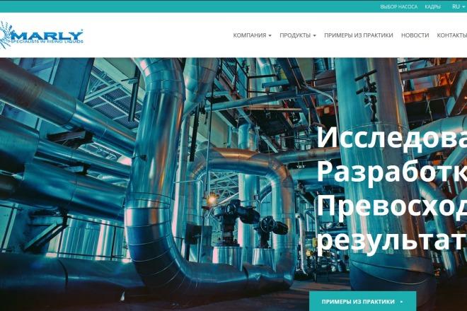 Скопирую любой сайт в html формат 9 - kwork.ru