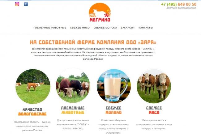 Cайт на Joomla. Визитка, магазин, инфосайт 2 - kwork.ru