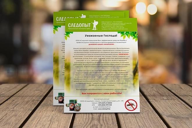 Создам качественный дизайн привлекающей листовки, флаера 24 - kwork.ru