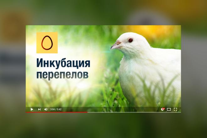 Грамотная обложка превью видеоролика, картинка для видео YouTube Ютуб 29 - kwork.ru