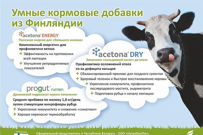Разработаю рекламный макет для журнала, газеты 3 - kwork.ru