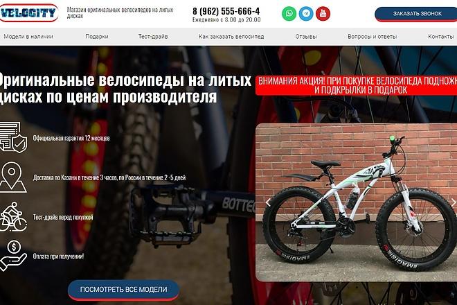 Создам лендинг на вордпресс быстро 16 - kwork.ru
