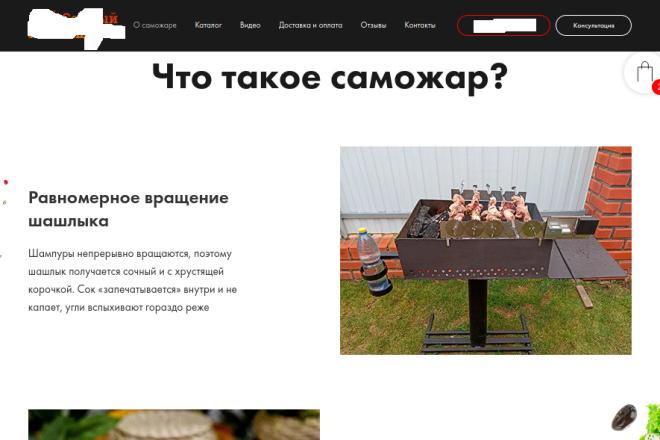 Скопирую страницу любой landing page с установкой панели управления 61 - kwork.ru