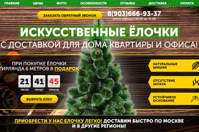 Качественная копия лендинга с установкой панели редактора 32 - kwork.ru