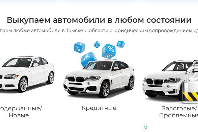 Качественная копия лендинга с установкой панели редактора 15 - kwork.ru