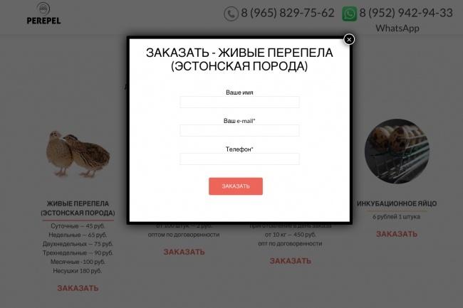 Создание одностраничника на Wordpress 184 - kwork.ru