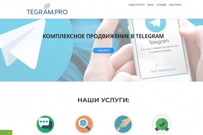 Создание одностраничника на Wordpress 183 - kwork.ru