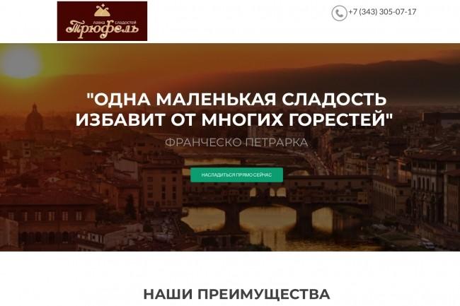 Создание одностраничника на Wordpress 160 - kwork.ru