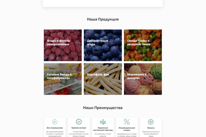 Создание сайта на WordPress 5 - kwork.ru