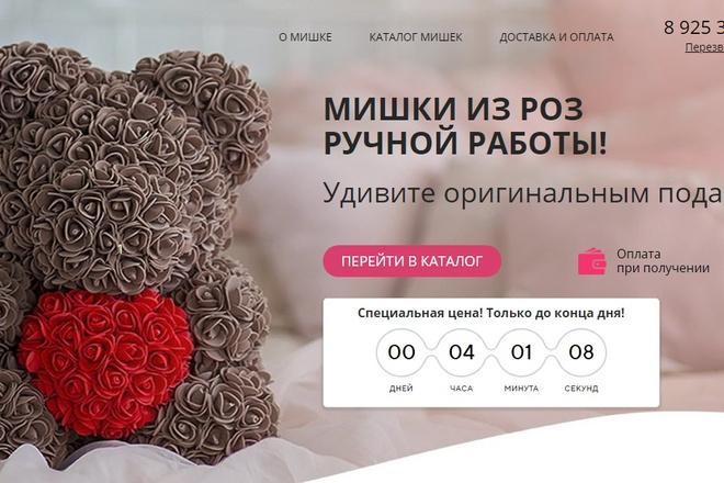 Качественная копия лендинга с установкой панели редактора 87 - kwork.ru