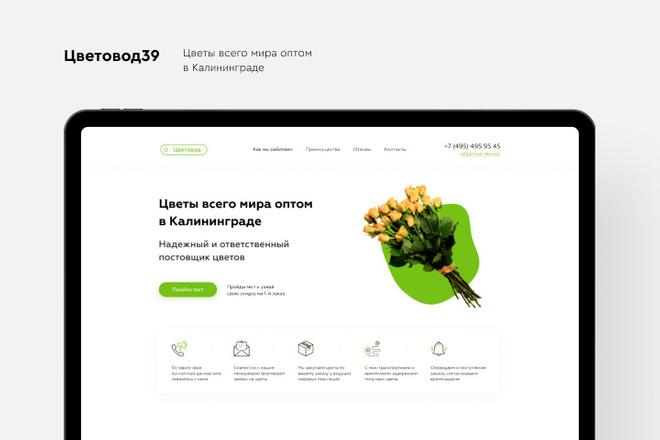 Создание Landing Page, одностраничный сайт под ключ на Tilda 12 - kwork.ru