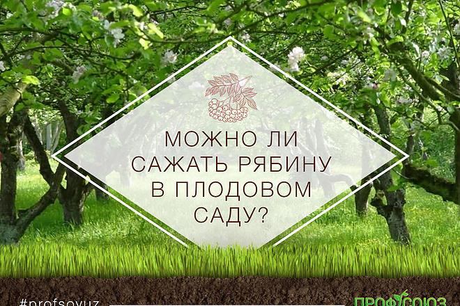 Яркий, броский баннер 8 - kwork.ru
