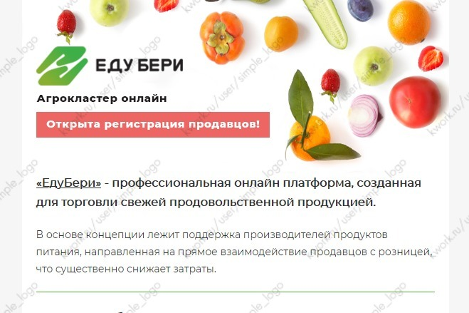 Html-письмо для E-mail рассылки 31 - kwork.ru