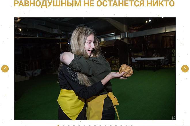 Создаю Лендинг на Тильде под ключ 34 - kwork.ru