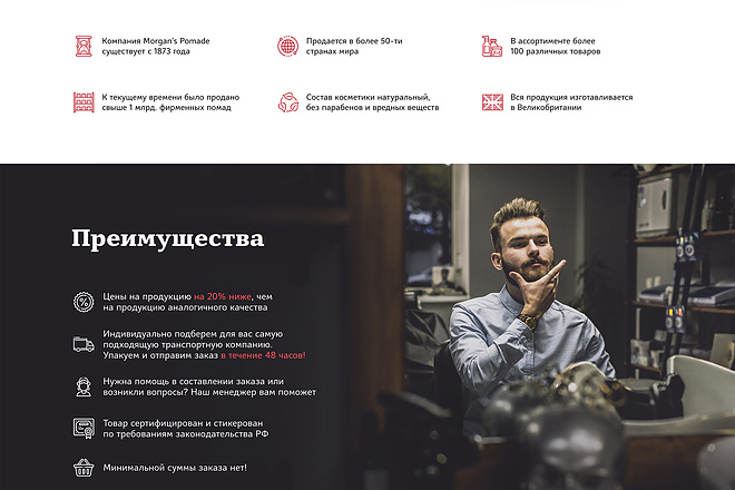 Лендинг на Tilda 1 - kwork.ru