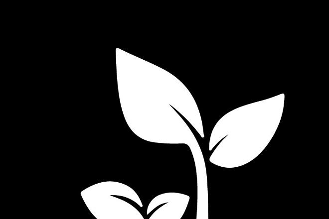 3 варианта логотипа + доработки по выбранному 18 - kwork.ru