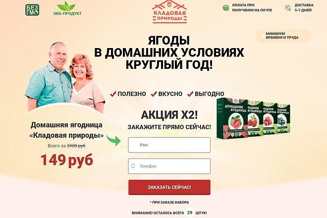 Скопировать лендинг 6 - kwork.ru