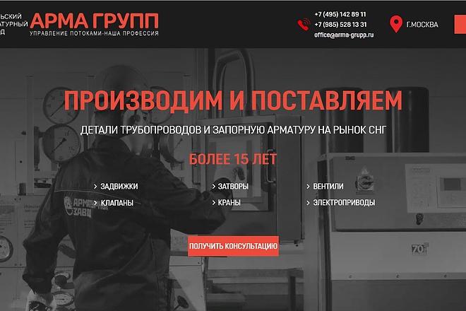 Создание сайта - Landing Page на Тильде 143 - kwork.ru