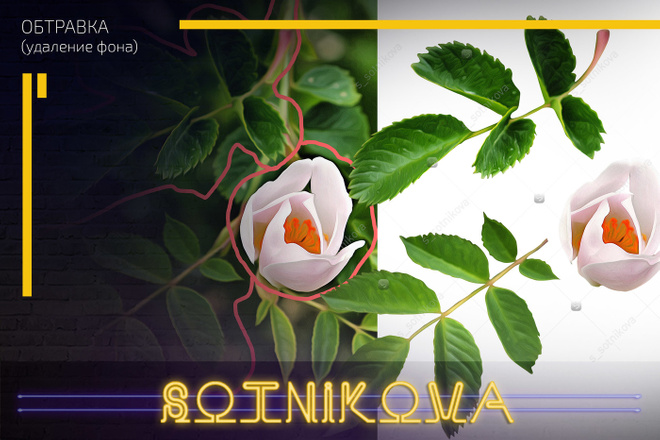 Сделаю обтравку до 15 фото за 1 kwork 5 - kwork.ru