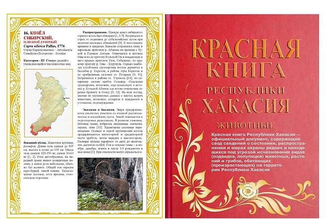 Разработаю дизайн листовки или флаера 6 - kwork.ru