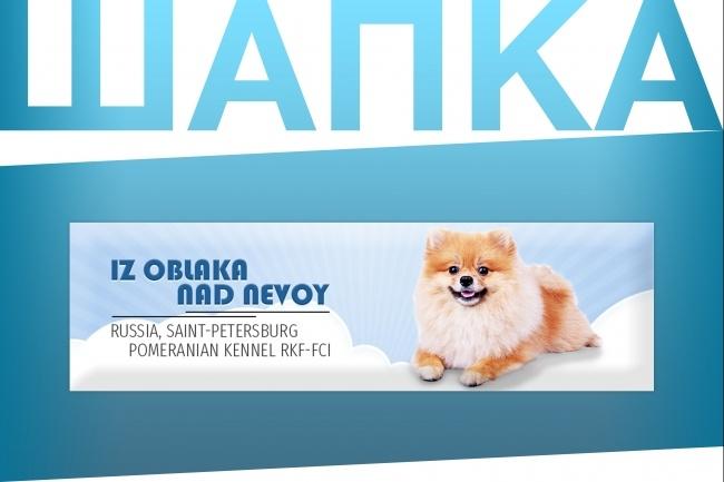Создам уникальную графическую шапку для сайта 25 - kwork.ru