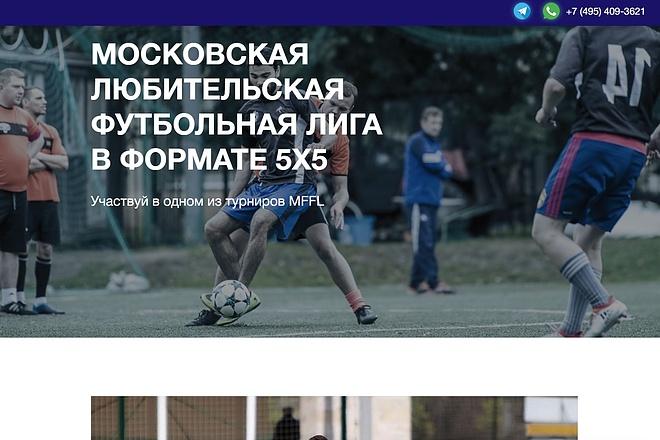 Адаптация страницы сайта под мобильные устройства 12 - kwork.ru