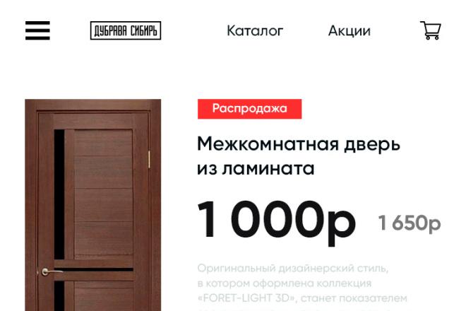 Дизайн сайта или лендинга 17 - kwork.ru