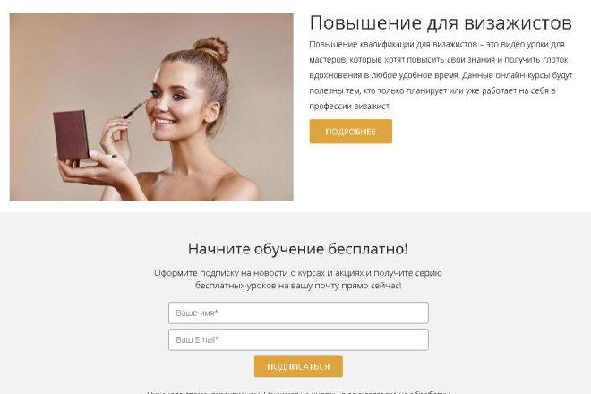 Копирование Landing Page и перенос на Wordpress 15 - kwork.ru