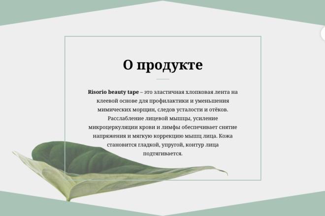 Создание сайта на Тильде 2 - kwork.ru