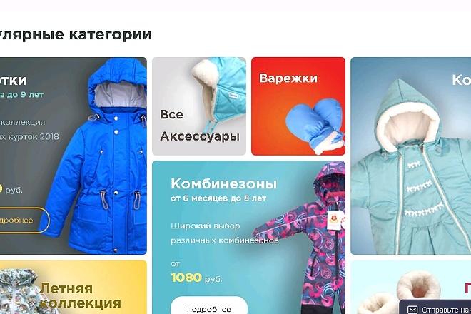 Онлайн-магазин под ключ 9 - kwork.ru