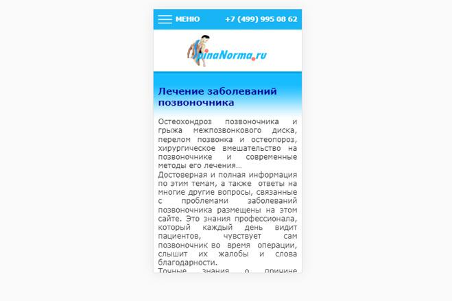 Адаптация сайта под мобильные устройства 33 - kwork.ru