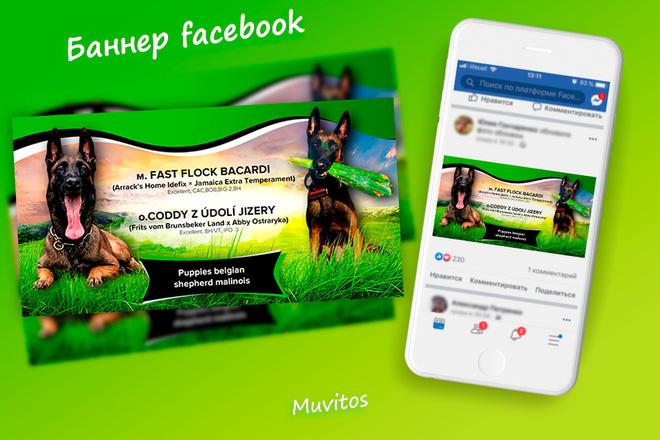 Креативы, баннеры для рекламы FB, insta, VK, OK, google, yandex 28 - kwork.ru