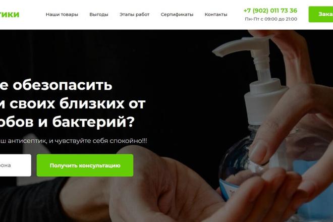 Сделаю классный Лендинг на Elementor Pro 1 - kwork.ru
