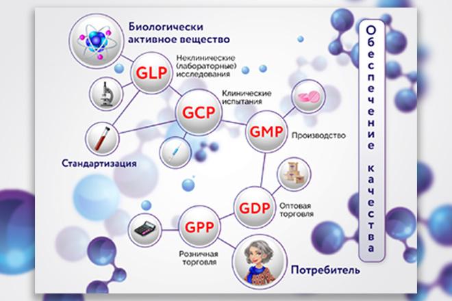 Инфографика любой сложности 7 - kwork.ru