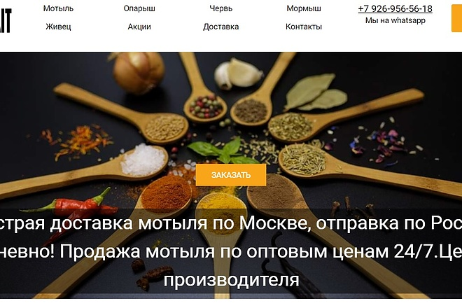 Создам лендинг на вордпресс быстро 23 - kwork.ru